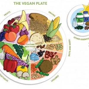 Vegan Plate art BIG hi res (2)